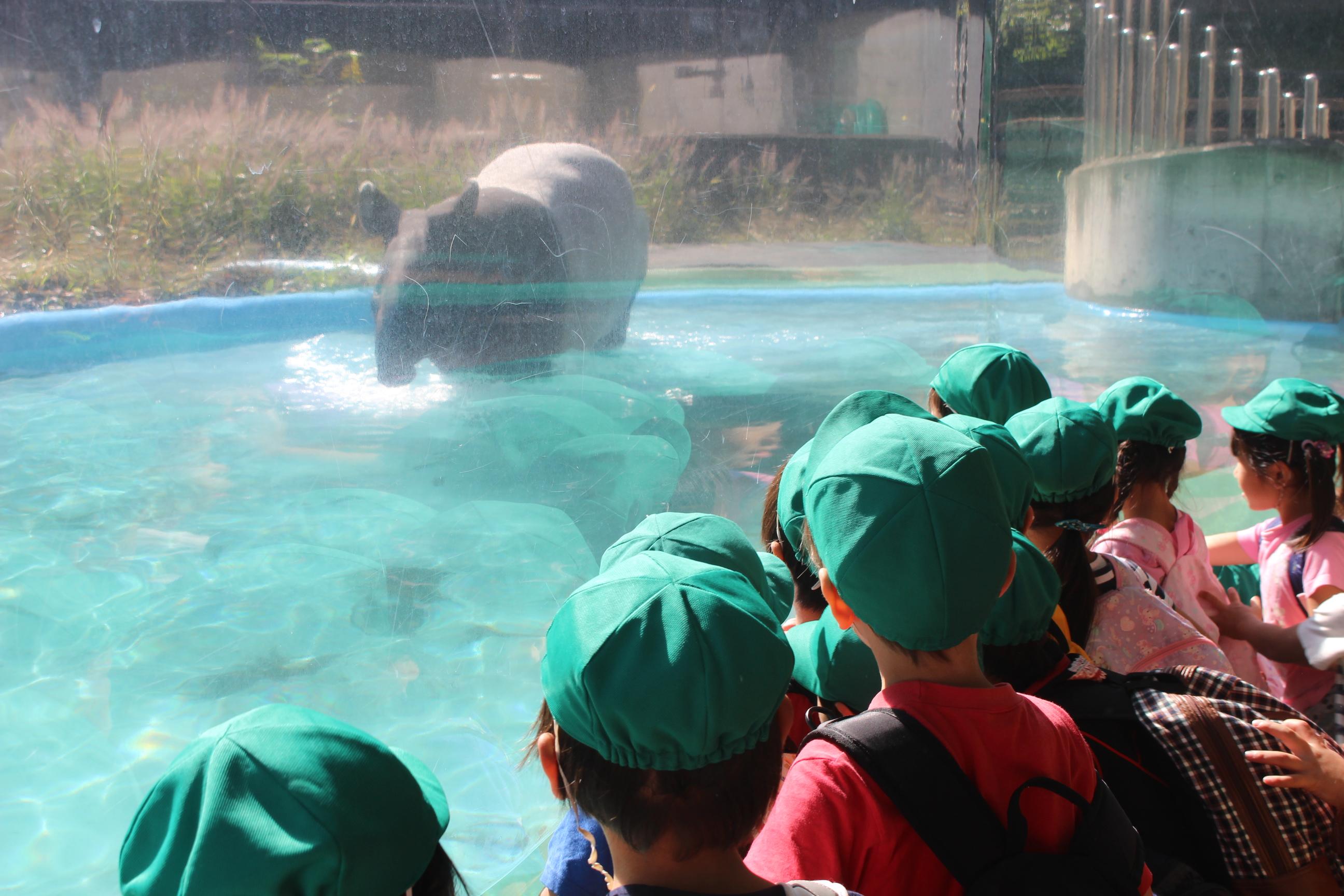 多摩 動物 公園 天気